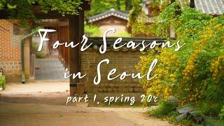 [Four Seasons in Seoul] SPRING 20℃ / 서울의 사계절 '봄'