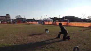 2015.12/20に熊本県菊池市の菊池市営中央グランドで開催された JFA全日...