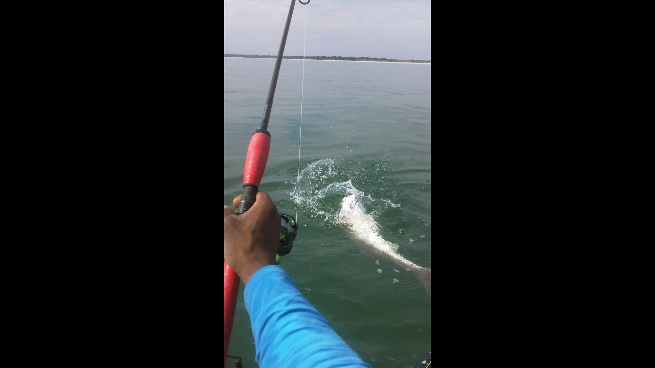 Kayak fishing at the murrell 39 s inlet s c jetties youtube for Murrells inlet fishing report