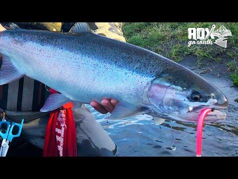 Oregon Coast STEELHEAD Fishing MISSION! (Adx Go South Ep. #2)