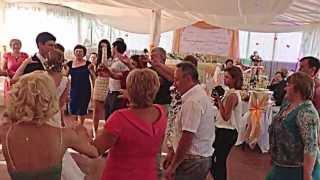 Свадьба Алексея и Екатерины, 8 июня 2013г. Ведущий на свадьбу Анатолий Васильев