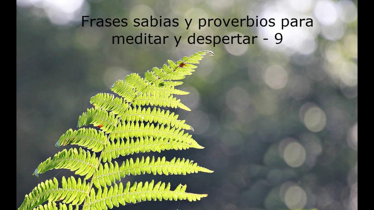 Frases Sabias Y Proverbios Para Meditar Y Despertar 9