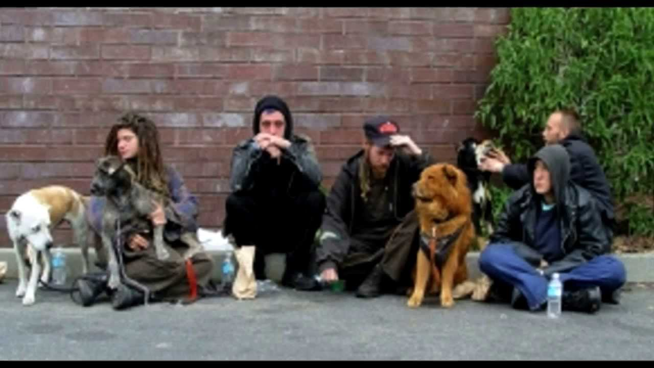 Pin On Homelessness And Youth