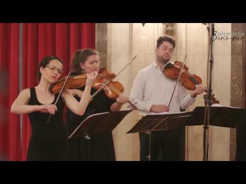 Belgrade Baroque: N. Porpora - Cello Concerto in G major - Live @ Belgrade City Hall