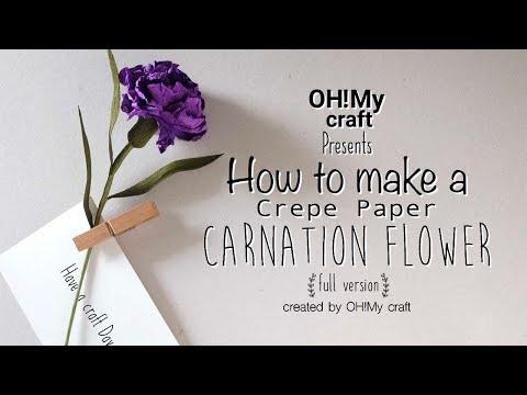 Crepe Paper Carnation