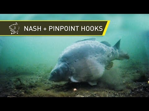 Nash Tackle - Pinpoint Hooks - Marc Voosen Interview with Alan Blair
