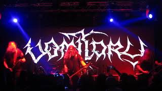 VOMITORY - Madness Prevails - [LIVE] Bogotá - Colombia