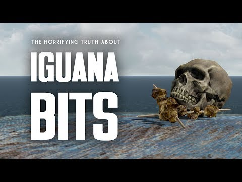 The Horrifying Truth About Iguana Bits - The Full Story of Doc Morbid - Fallout 1 Lore