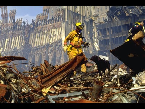 Dogs of 9/11