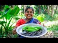 Taki Fish with Green Banana Cooking: Spotted Snakehead Fish and Green Banana Curry Recipe