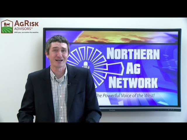 Livestock Market Report & Long Range Forecast with Colter Brown & Meteorologist Don Day