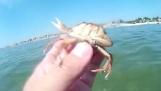 Экшн камера sj4000. Съемка под водой.  Черное море.  Затока.  Нарезка видео.(Примеры видео под водой. Сделано экшн камерой sjcam sj4000. Покупал камеру здесь http://ali.pub/u4263 Ссылка на Gearbest https://go..., 2016-08-04T20:14:10.000Z)
