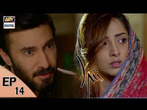 Shiza Ep 14 - 16th June 2017 - ARY Digital Drama