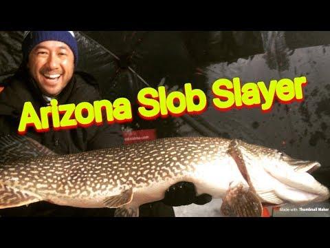 Pike Ice Fishing - Arizona Pike Slayer