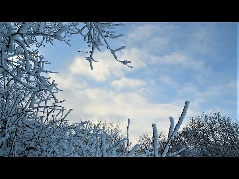 Winter Sky, Czech Republic from Travel with Iva Jasperson