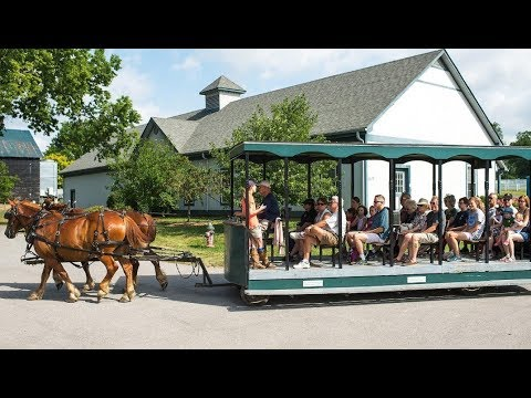 10 Best Tourist Attractions in Lexington, Kentucky