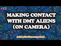 Making Contact With The DMT Aliens | A Place For Humans podcast w/ Dakota Wint #11