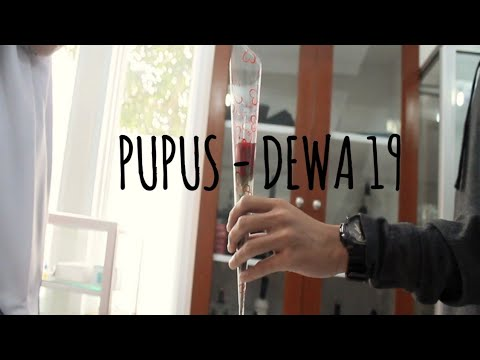 Pupus - Dewa 19 (Cover) by The Amateur (Official Music Video)