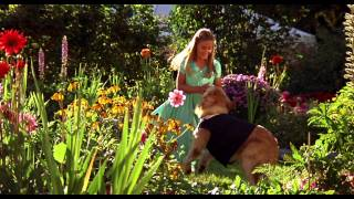 Air Bud 3: World Pup - Trailer