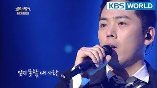 Kim Yongjin - Love Like a Sad Picture | 김용진 - 슬픈 그림 같은 사랑 [Immortal Songs 2 / 2018.02.10]