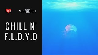 F.L.O.Y.D a Chillout Experience Full Album