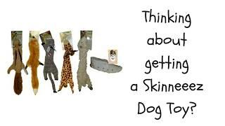 Skinneeez Stuffingless Dog Toy Review