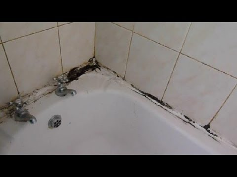How to clean the grout between your wall tiles and revamp mouldy mastic.