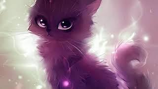 Какая ты кошка по знаку зодиака 1  часть