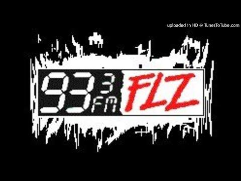93.3 FLZ - WFLZ Tampa - 1998 - Domino