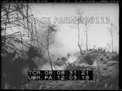 1945 Airforce- Palau, Mexico, Japan 250113-01 | Footage Farm