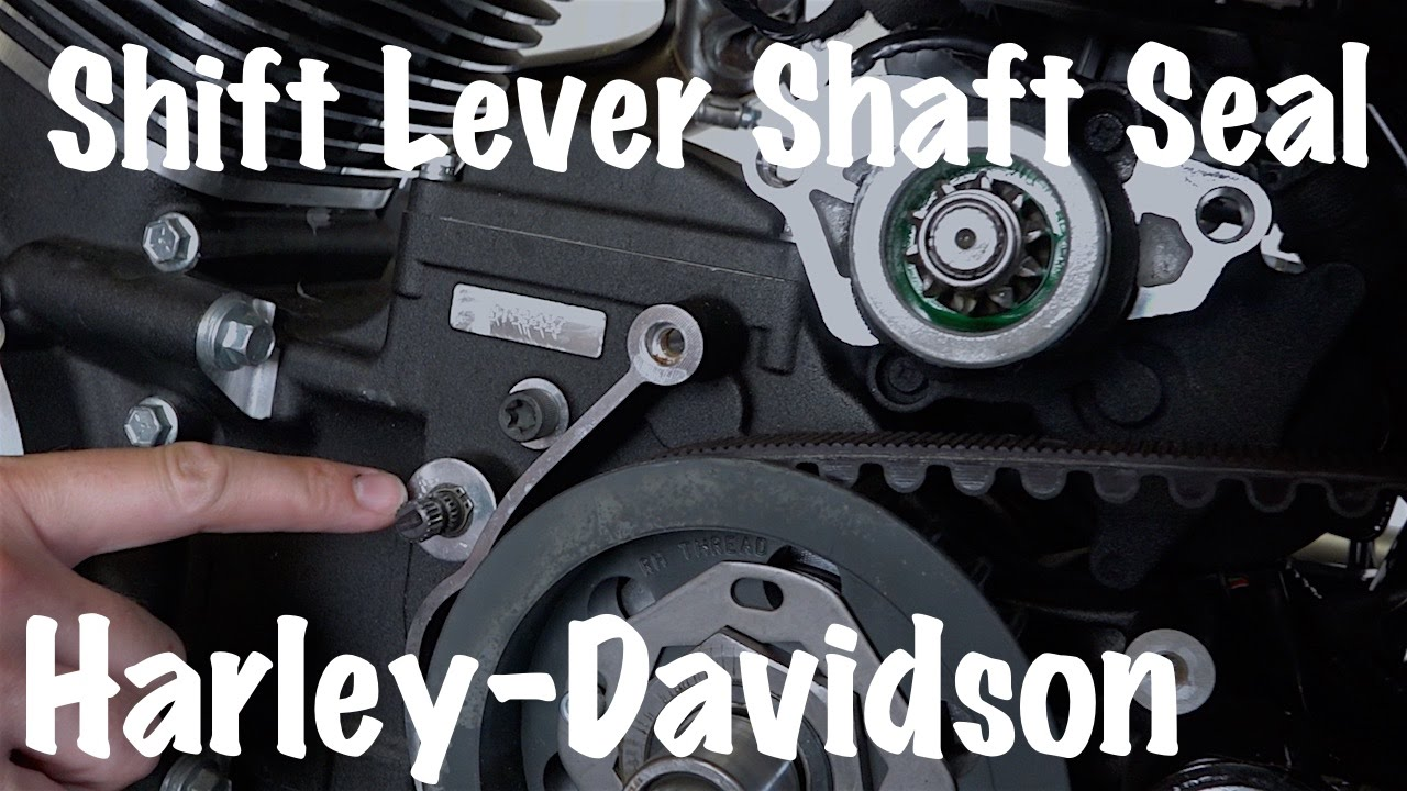 Replace & Install a Shifter Lever Shaft Seal on a Harley-Davidson |  Motorcycle Podcast