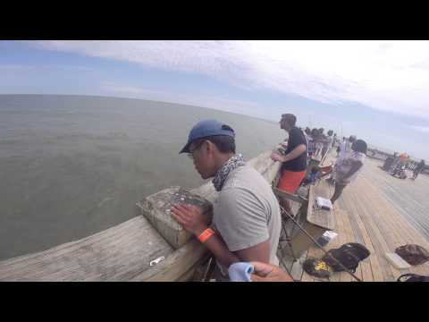Folly Beach Pier Fishing