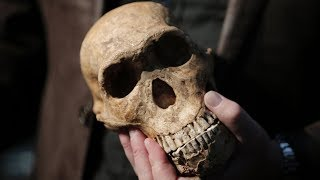 Recent Discoveries That Proved We Got History All Wrong