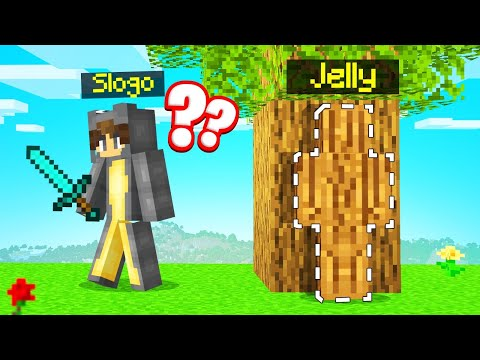CAMO HIDE AND SEEK In MINECRAFT… (impossible)