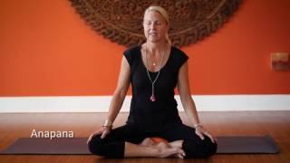 10 Minute Meditation   Anapana