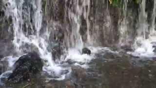 Balite Falls, Amadeo, Cavite, Philippines