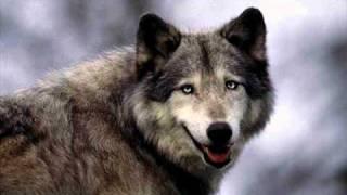 Play Hey Mama Wolf