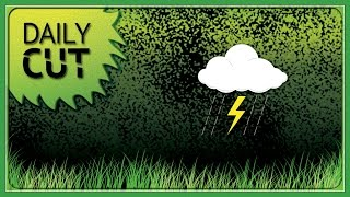 How Do You Schedule Rain Delays for Mowing Crews?