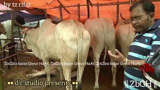 180 | ফিরে দেখা ২০১৮ | Bolod Lineup | Traditional Noyabazar Haat | Old Dhaka | ZbGH 2019