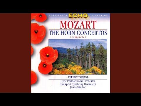 Horn Concerto No. 4 in E Flat Major, K. 495: I. Allegro moderato