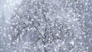 Maximilian Hecker-*Snow *