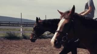 Школа конного спорта в пригороде Иркутска