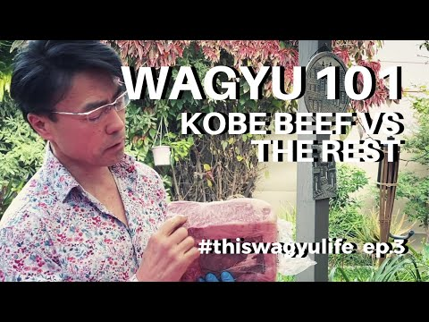 WAGYU EDUCATION 101 | Kobe Wagyu, Japanese A5 Wagyu Beef And Australian Wagyu Beef