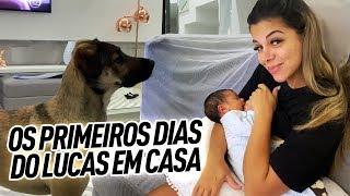 PRIMEIROS DIAS DO LUCAS EM CASA
