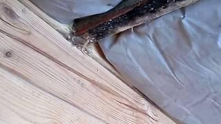 видео Как правильно укладывать пароизоляцию: какой стороной нужно укладывать пароизоляцию на потолок