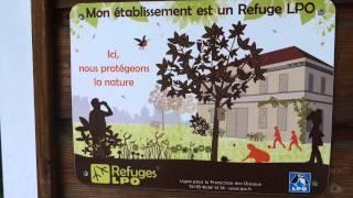 [HopTrip] Hopineo présente Le Petit Liou (France)