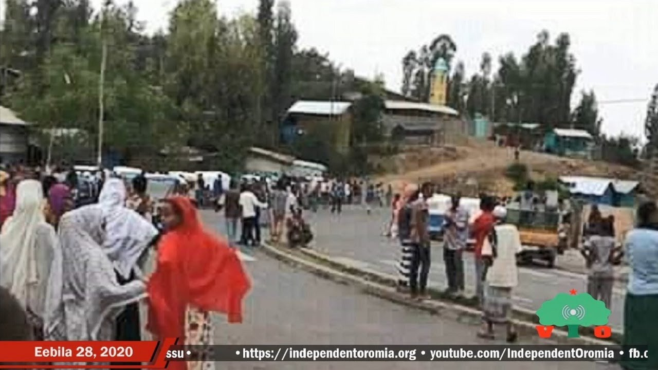 Ajjeechaa Suukanneessaa Oromoota Walloo 7 irratti Hidhattoota Affaariin Raawwatame