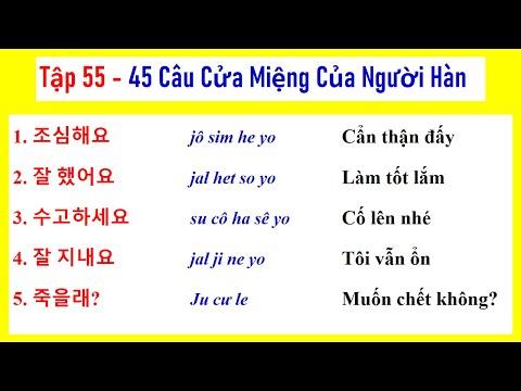 [ TẬP 55 ] 5000 CÂU TIẾNG HÀN NGẮN THÔNG DỤNG   실제로 자주 쓰는 한국어 문장들