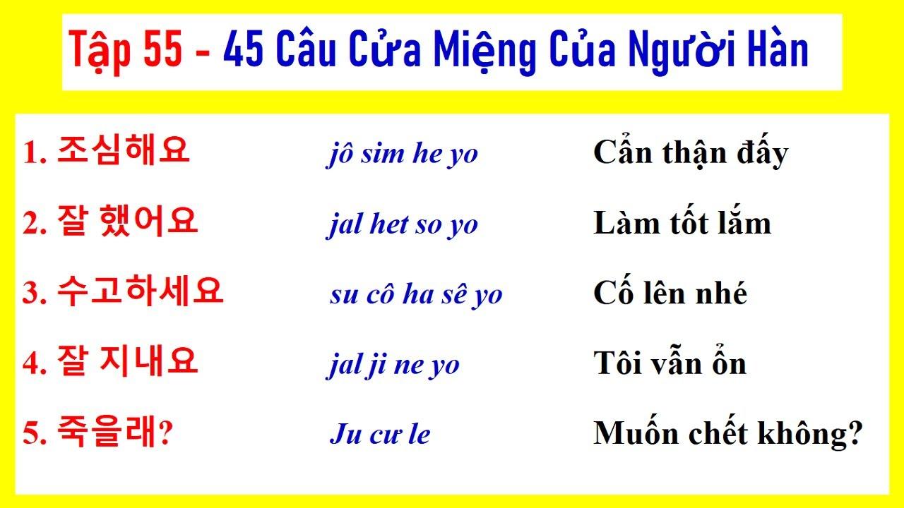 [ TẬP 55 ] 5000 CÂU TIẾNG HÀN NGẮN THÔNG DỤNG | 실제로 자주 쓰는 한국어 문장들