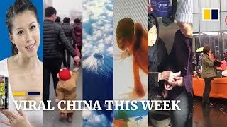 Viral China this week: Smart father uses strawberry to lead son through market and more